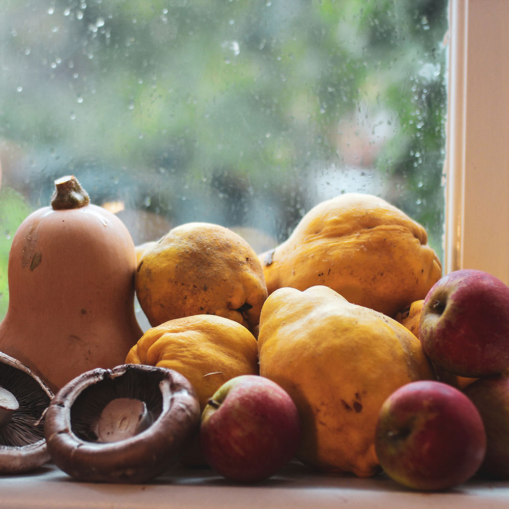 Celebrating Samhain with harvest goodies: squash, apples, mushrooms