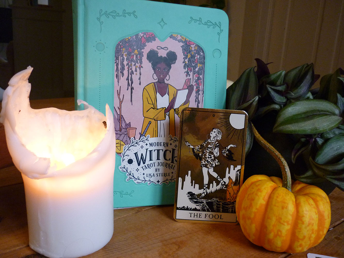 modern witch tarot journal special limited edition
